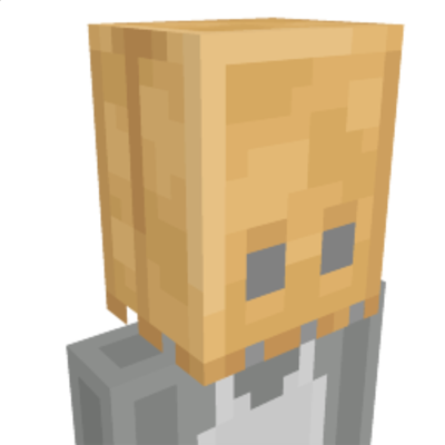 Paper Bag on the Minecraft Marketplace by Team Vaeron