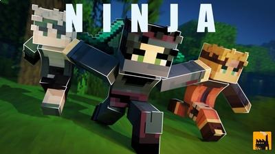 Ninja on the Minecraft Marketplace by Block Factory