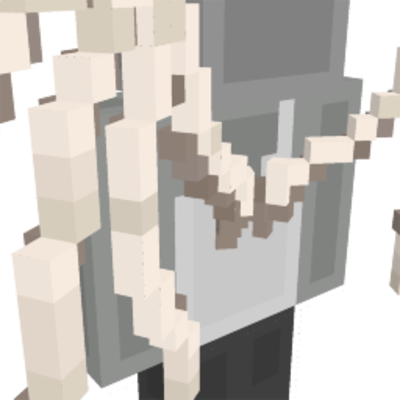 Skeleton Wings on the Minecraft Marketplace by stonemasons