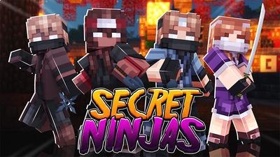 Secret Ninjas on the Minecraft Marketplace by Dig Down Studios