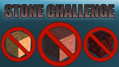 Stone Challenge on the Minecraft Marketplace by Dig Down Studios