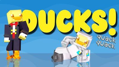 Ducks on the Minecraft Marketplace by Impulse