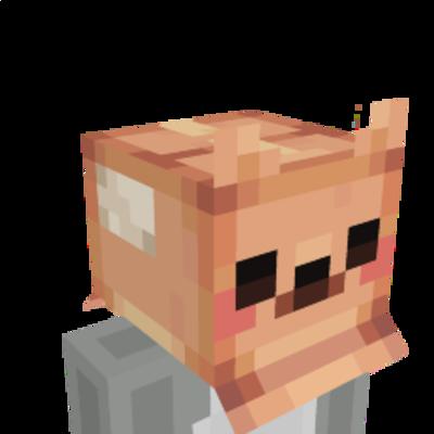Cardboard Box Head on the Minecraft Marketplace by Humblebright Studio