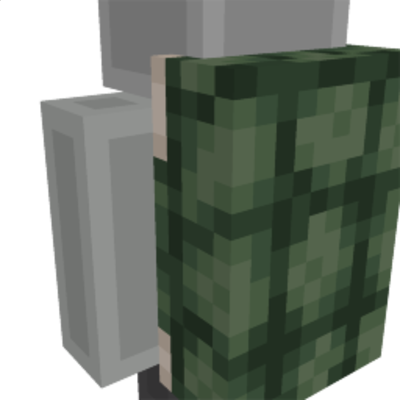Turtle shell on the Minecraft Marketplace by HorizonBlocks