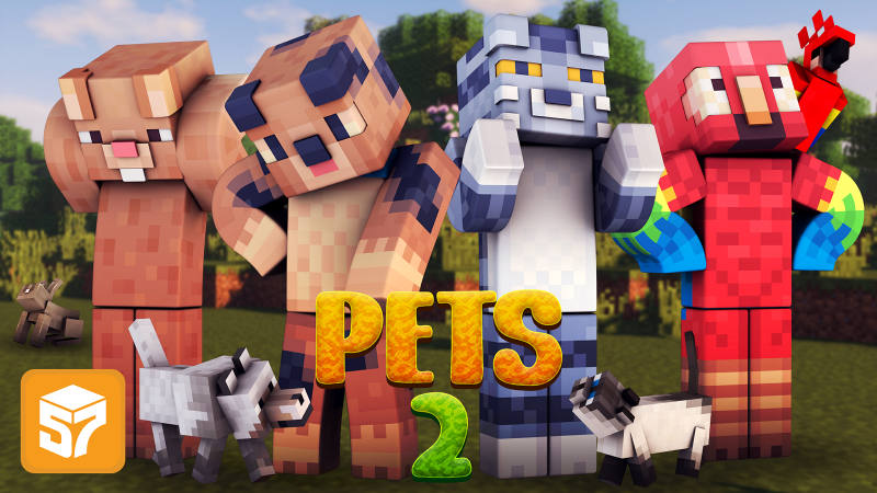 Play Pets 2