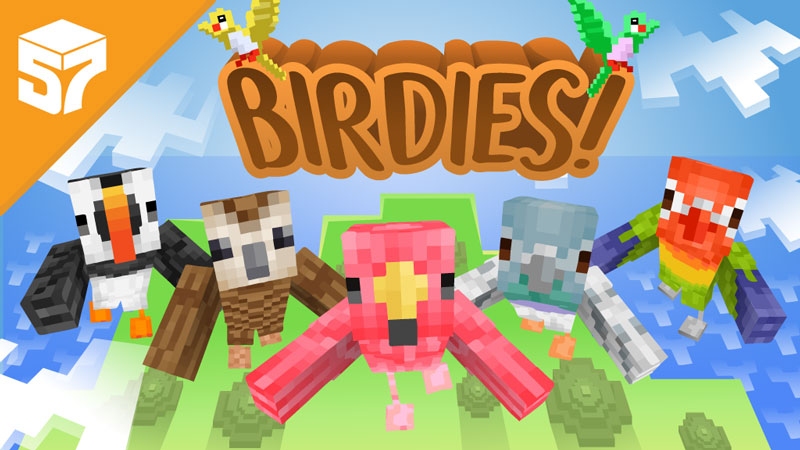 Play Birdies